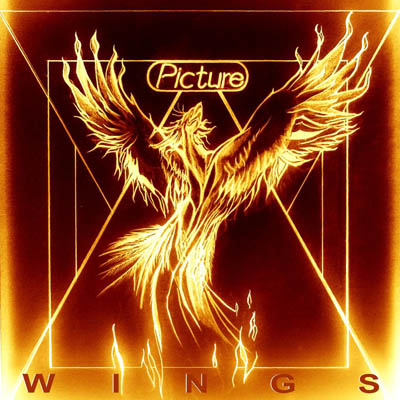 Cover_PICTURE_Wings