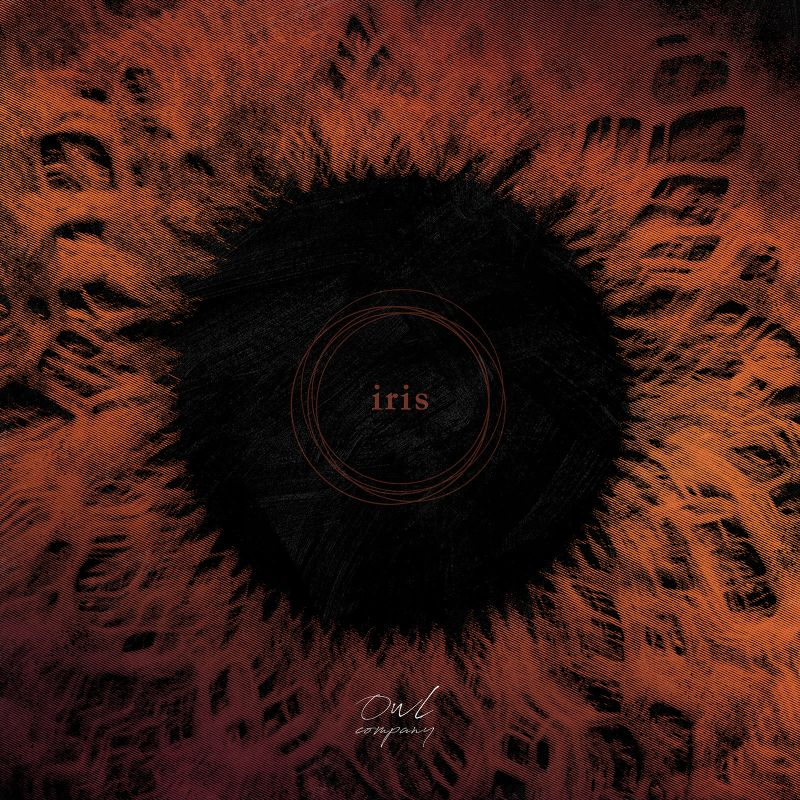 Iris-by-Owl-Company-album-cover