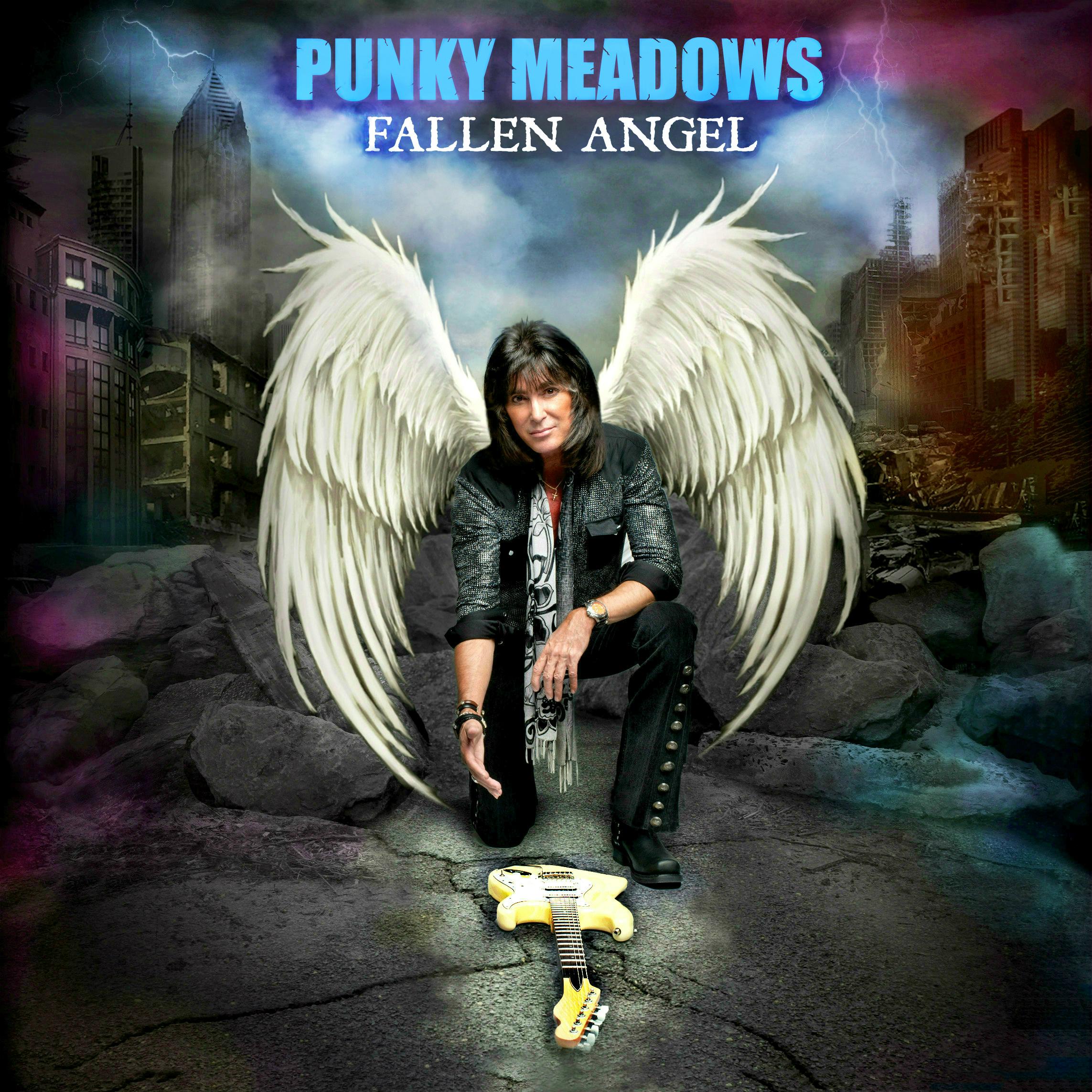 PUNKY_MEADOWS_album_cover_final_choice