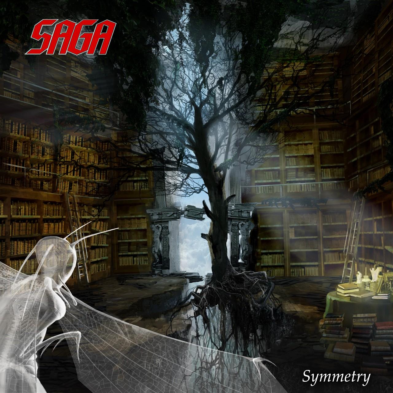Saga Symmetry hbls