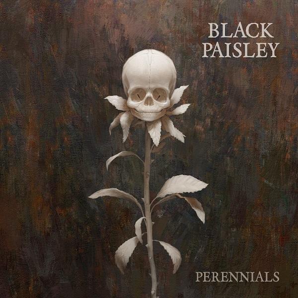 black-paisley-perennials