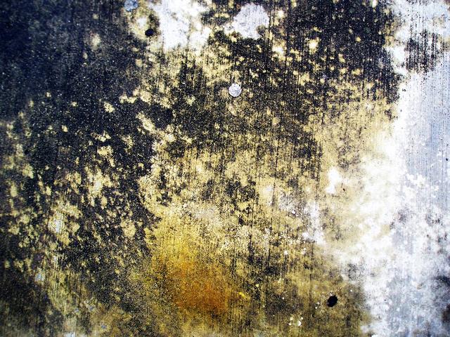 urban-corrosion-002-1492967-640x480
